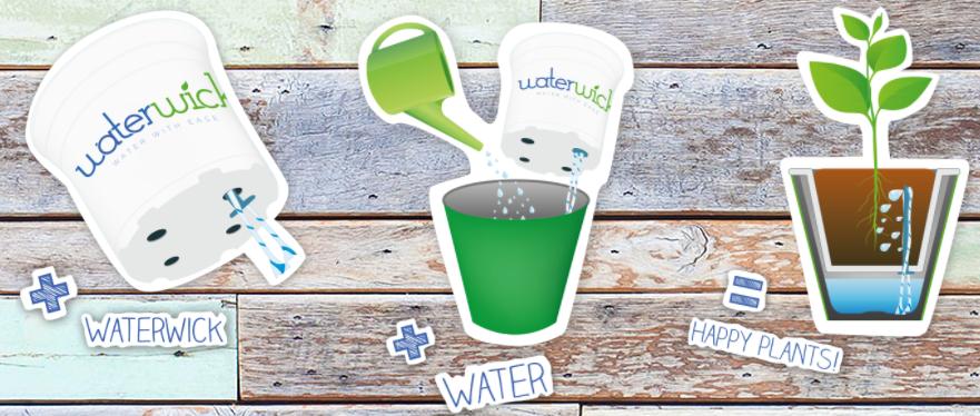 plant water geven zonder verzorging