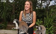 dieren verzorgen in de dierentuin