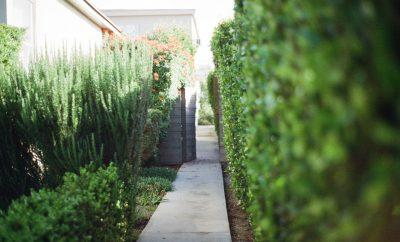 belangrijke details voor je tuin