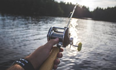 Vissen stressniveau